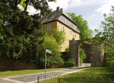 Burg in Dhronecken